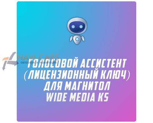 Голосовой ассистент (лицензионный ключ) для магнитол WM KS